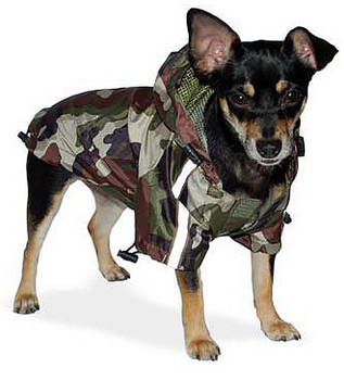 Army Camo Dog Raincoat