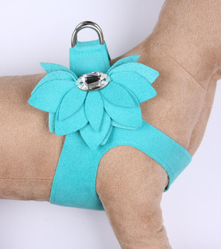 Bimini Blue Water Lily Step in Dog Harness