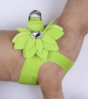 Kiwi Water Lily Step in Dog Harness