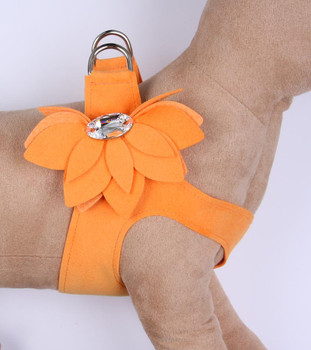 Tangerine Water Lily Step in Dog Harness