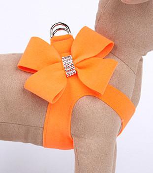 Electric Orange Nouveau Bow Dog Harness