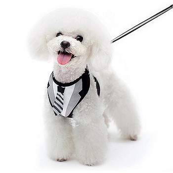 EasyGO Necktie Dog Harness