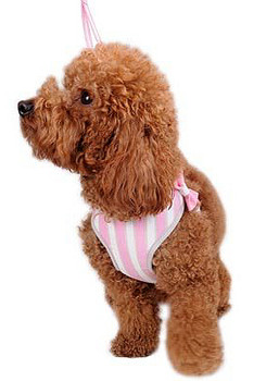 EasyGO Sweetbow Dog Harness