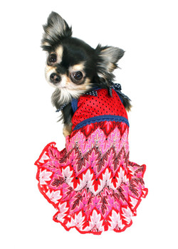 Muttsoni Dog Dress by Hip Doggie