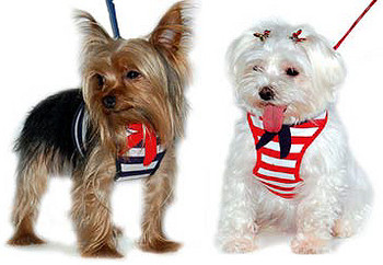 EasyGO Sailor Dog Harness