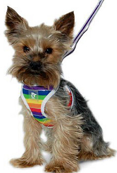 EasyGO Rainbow Dog Harness