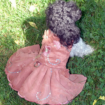 Little Dreams Dog Dress