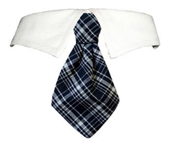 Jayden Grey Plaid Dog Neck Tie & Dog Collar