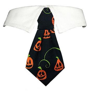 Halloween Pumpkin Dog Neck Tie & Dog Collar