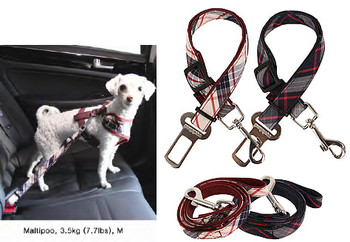 Dog Harness - Vogue II, Leash & Seatbelt Lead