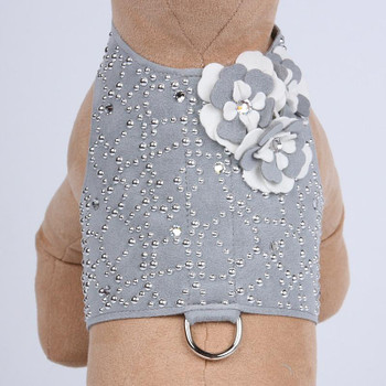 Special Occasion Bailey II Dog Harness by Susan Lanci - Platinum