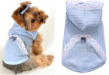 Blue Lace Eyelet Dog Hoodie by Hip Doggie