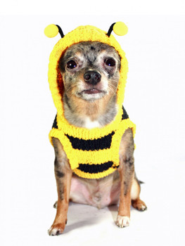Chenille Bumble Bee Dog Hooded Sweater by Hip Doggie