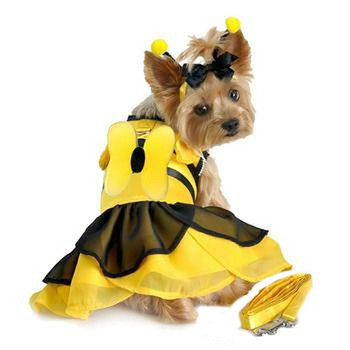 BumbleBee Fairy Dog Costume Dress -Small & Large Dogs