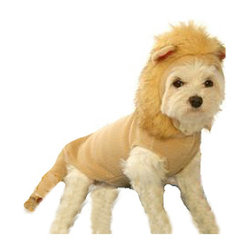 Lion Dog Costume Dog Costume -Small & Big Dogs