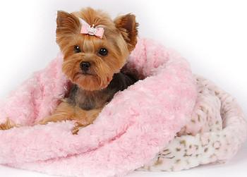 Cuddle Cup - Pink Fluff w/Pink Shag by Susan Lanci Designs