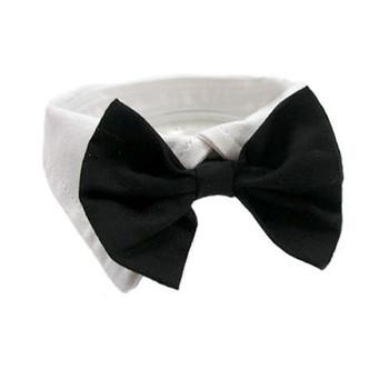 Black Cotton Dog Bow Tie & Collar