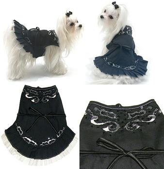 Midnight in Paris Dog Dress by Oscar Newman