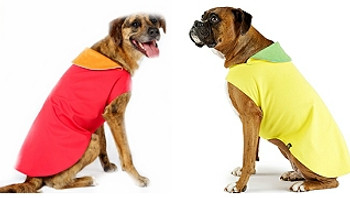 Astoria Reflective Dog Wrap - 4 Colors - All Size Dogs