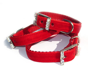 Velvet w/ Crystal Buckle Dog Collar, More Colors - All Sizes