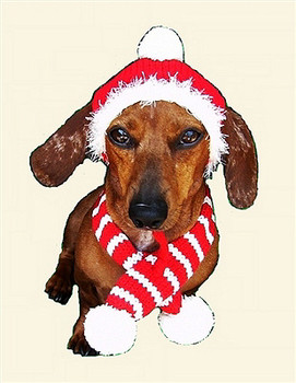 Red Holiday Dog Hat & Scarf