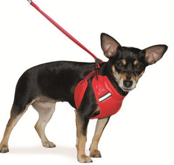 EasyGO Flash Dog Harness