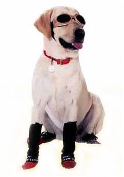 Pet Dog Leg Wraps