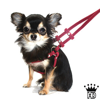 Step In Dog Harnesses - Super Soft Micro Suede - Burgundy
