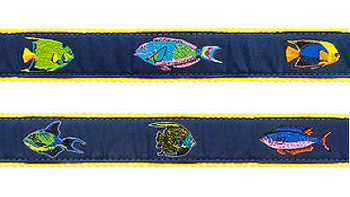 Dog Collar - Tropical Fish 1 1/4