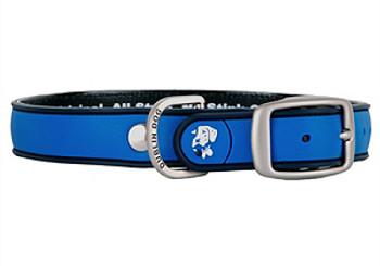Blue Ribbon Simply Solid Dog Collar
