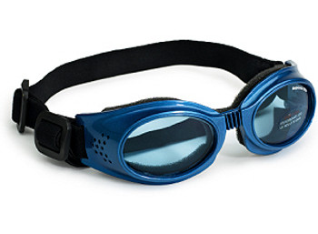 Originalz Doggles Blue Dog Sunglasses