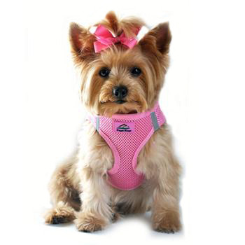 American River Choke Free Step In Dog Harness, Candy Pink 1 - 50 lbs