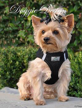 American River Choke Free Step In Dog Harness - Black - 1 - 50 lbs