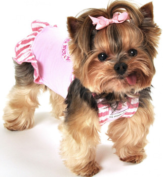 Pink Striped Princess Knit Dog Dress