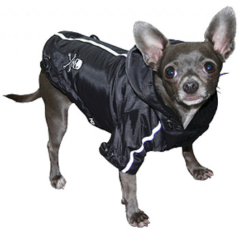 HD Puppagonia Skull Dog Rain Parka - Black by Hip Doggie - XS & Small