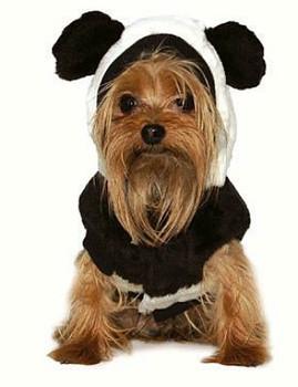 Panda Dog Coat / Costume