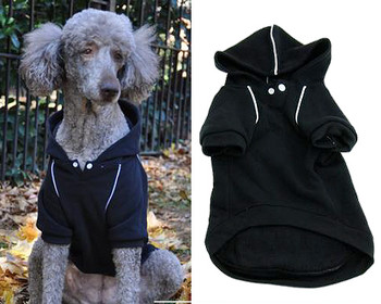 Sport Dog Hoodie -Jet Black - Tiny - Big Dog Sizes