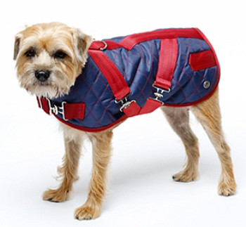 Quilted Horse Blanket Dog Coat - Navy / Cranberry
