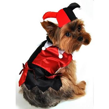 Jester Dog Costume