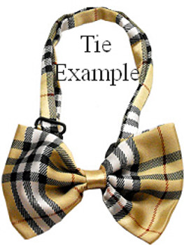 Black & Orange Chevron Dog Bow Tie - Small & Medium