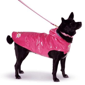 Daisy Nantucket Dog Slicker Raincoat