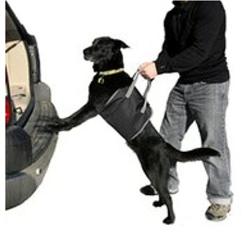 Large Dog Lift Harness