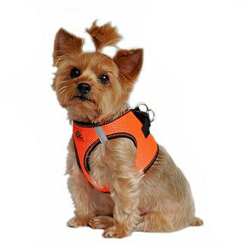 Iridescent Orange American River Choke Free Step In Dog Harness, 1 - 50 lbs