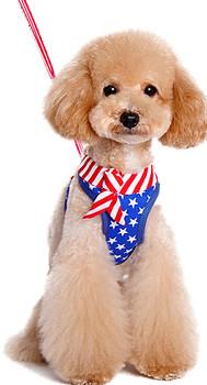 EasyGO USA Patriotic Dog Harness