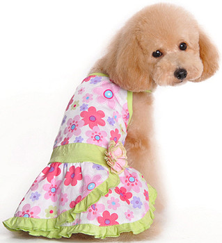 Floral Summer Dog Dress