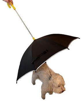 Dog Walking Umbrella w/ Reflective Lining & Leash Holder
