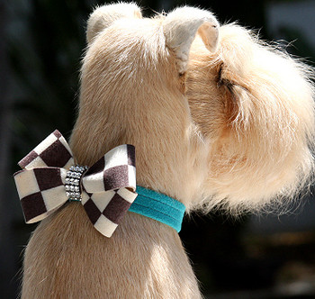Windsor Check Nouveau Bow Dog Collars by Susan Lanci