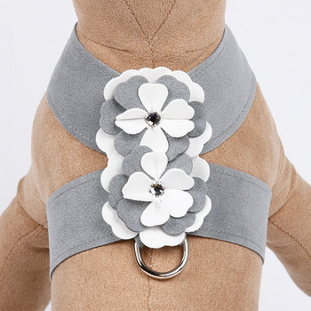 Special Occasion Platinum Tinkie Harnesses by Susan Lanci