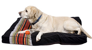 Acadia National Parks Pendleton Dog Bed - Small - Big Dog Sizes