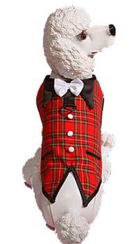 Tartan Red Plaid Christmas Dog Harness